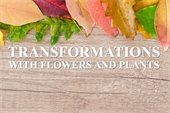 Seasonal Floral Transitions with Beth White